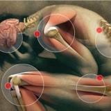 pain medicine and pain management