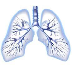 Lung rehab in delhi